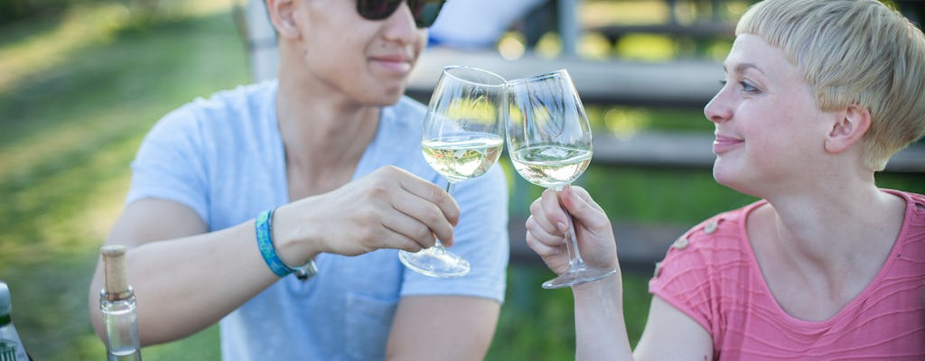 Vienna half-day guided wine tour by bike and on foot