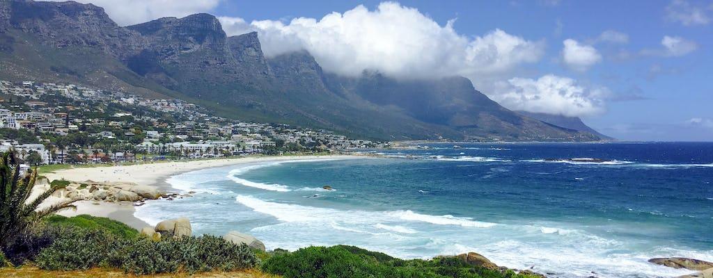 Full-day Cape Peninsula tour