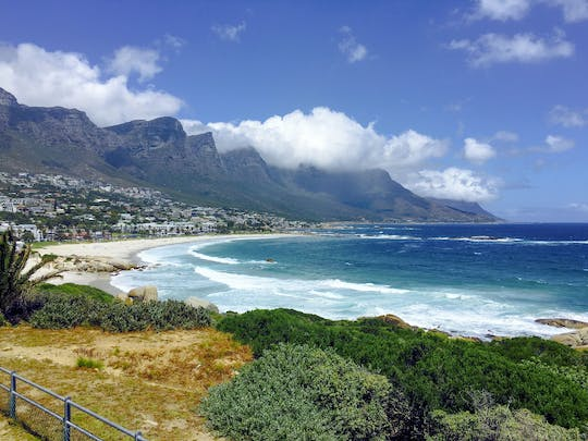 Full-day Cape Peninsula tour