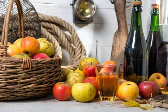 Full-day tour of  gourmet cheese and cider tasting from Bayeux