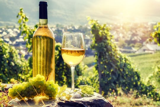 Alsace full-day shared wine tour from Colmar