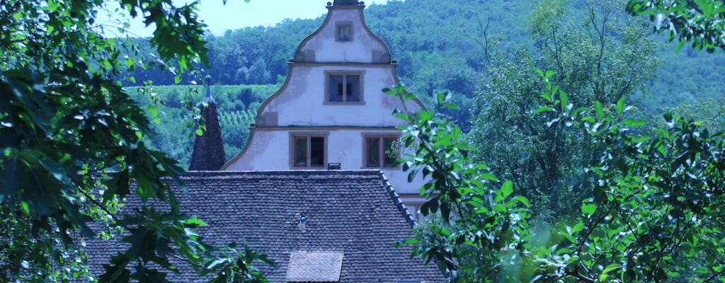Villages of Barr full day tour- medieval castle and interactive workshop with wine tasting