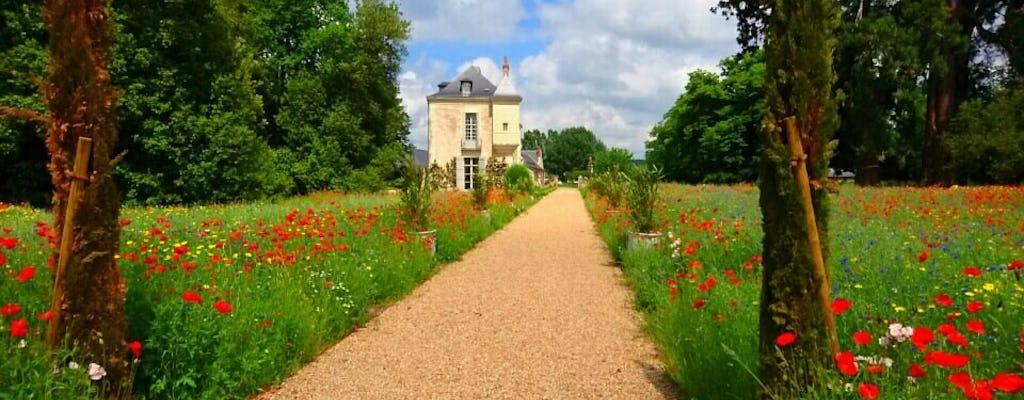 Tour privato e degustazione di vini nella Valle della Loira con Vouvray, Bourgueil e Chinon