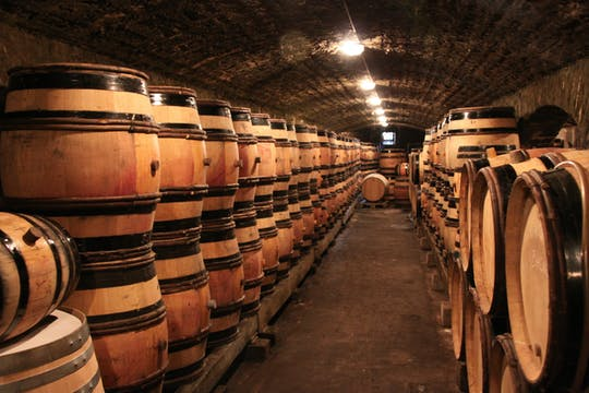 Private tour in Burgundy with Chateau of Clos de Vougeot and two local wineries