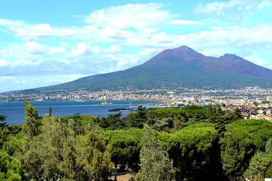 Tour of Pompeii and Mount Vesuvius from Naples