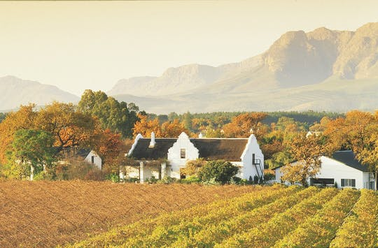 Cape Winelands half-day shared tour