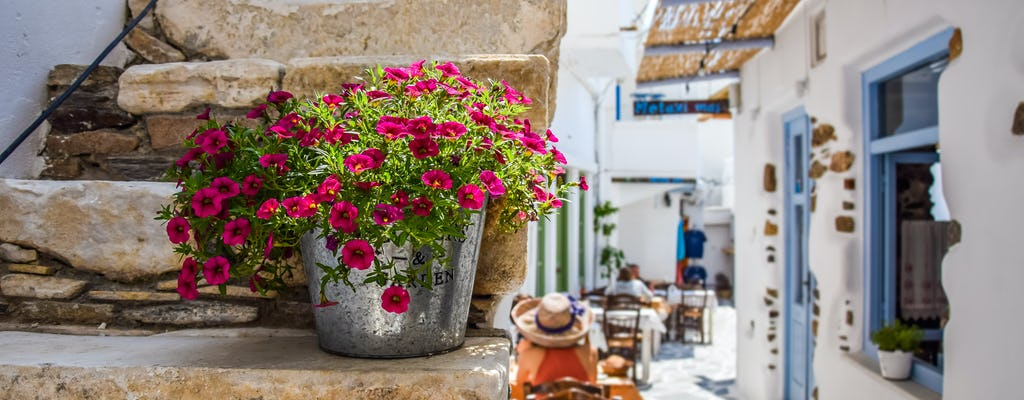 Cooking experience in Naxos