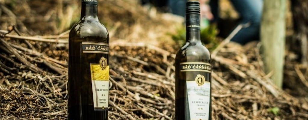 Promenade œnologique guidée avec dégustation de vin près de Stuttgart