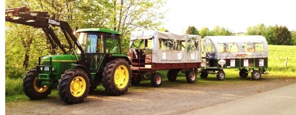 Vineyard tour in covered wagon with wine tasting near Stuttgart