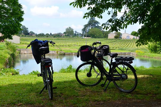 Bike tour in heart of Saint-Emilion's vines