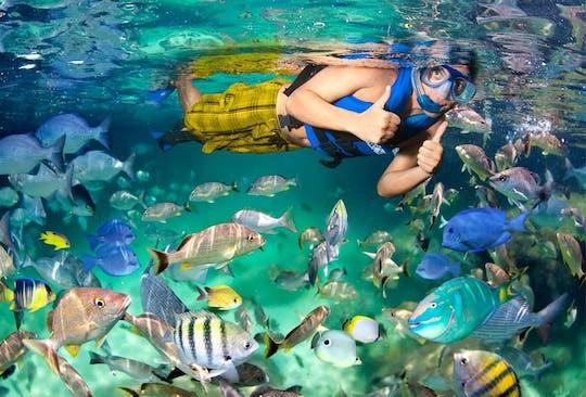 Excursion à Xel-Ha Riviera Maya