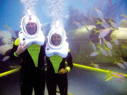 De Palm Island Sea Trek Experience