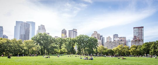 Picnic experience in Central Park