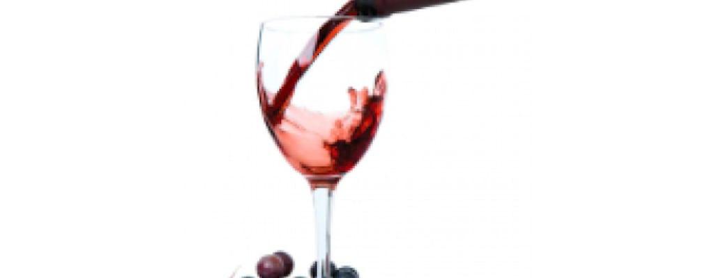 Degustazione Vini Cantina Apicella