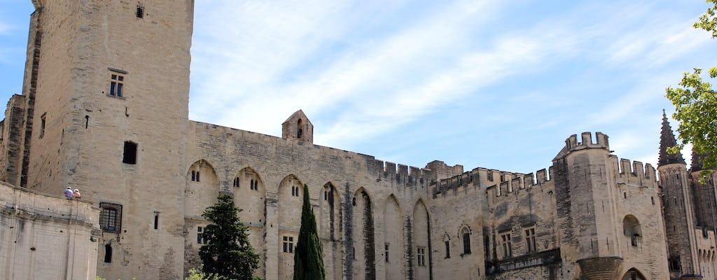Ganztägige private Tour durch Avignon und die Weinberge von Chateauneuf du Pape