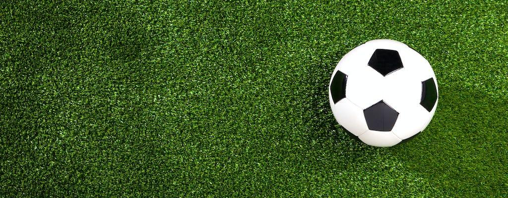 Premier League: Watford Fc - Newcastle United 25-04-2020