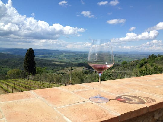 Organic Brunello wine tour with lunch in Montalcino