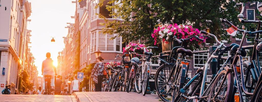 Amsterdam jednodniowa wycieczka z Brukseli
