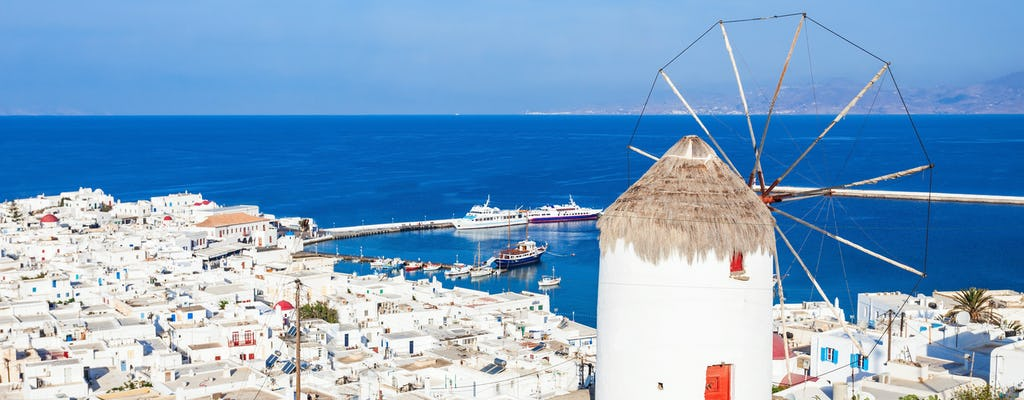 Delos and Mykonos day cruise from Naxos