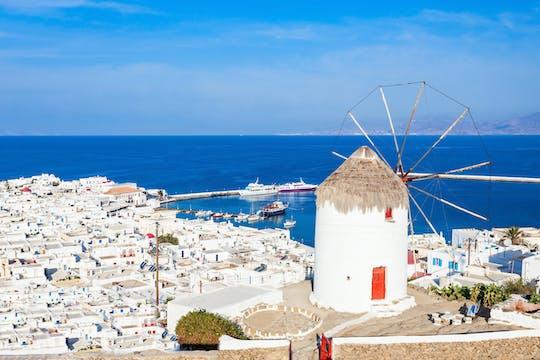 Delos y Mykonos crucero de un día desde Naxos
