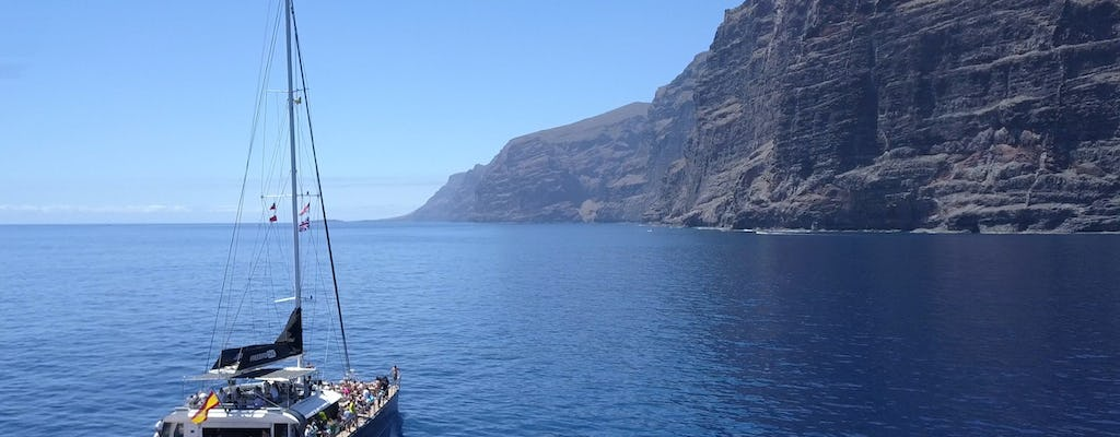 Whale watching boat trip to Los Gigantes and Masca