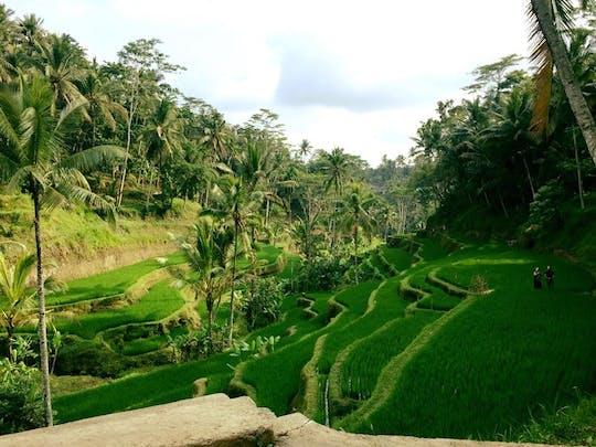 Caminhada invisível em Bali