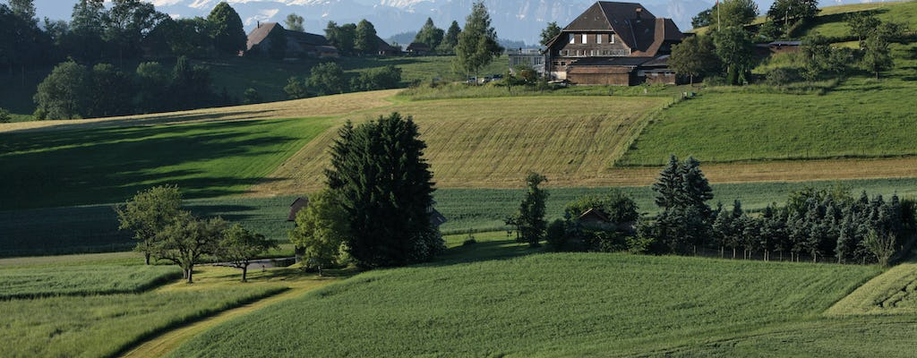 Bern capital and countryside tour from Lucerne