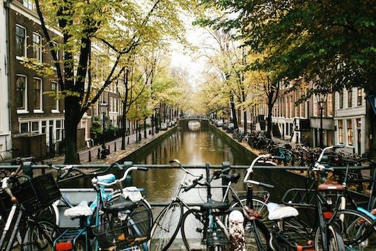 Wycieczka z przewodnikiem po hisorycznym centrum Amsterdamu i  Rijksmuseum