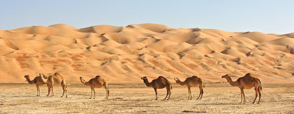 Tour privato in fuoristrada di un'intera giornata a Wahiba Sands