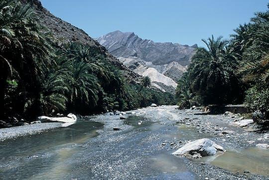 Visite privée en 4x4 dans le Wadi Blanc et Nakhl