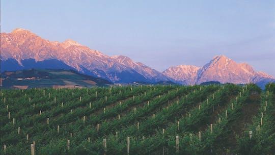Besuch und Verkostung im Weingut San Lorenzo