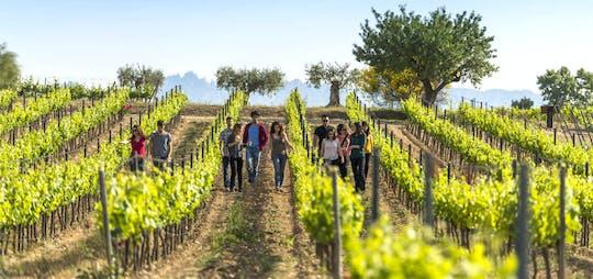 Caminhada e vinhos em El Penedès