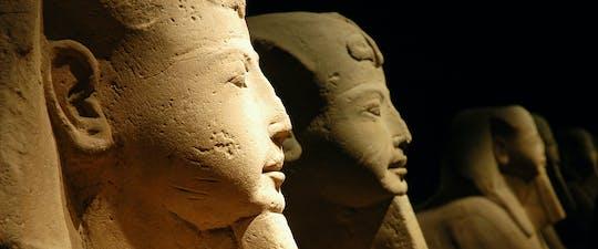 Tour di gruppo salta la fila del Museo Egizio di Torino