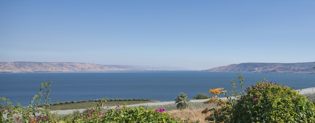 Biblical highlights tour of Galilee