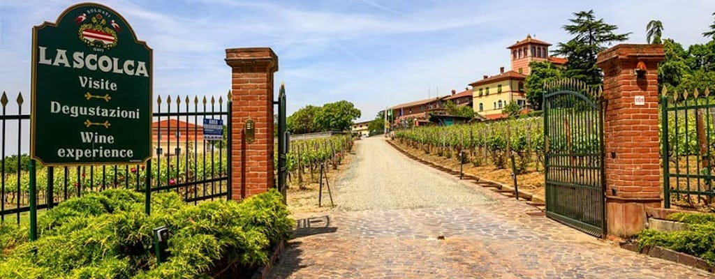 Discover where Gavi was born - Visit and tasting at La Scolca winery