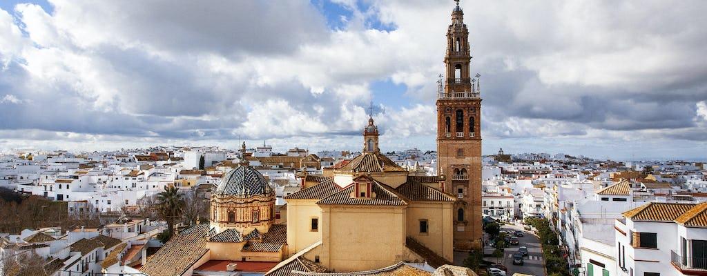 Excursión privada a la ciudad de Carmona desde Sevilla