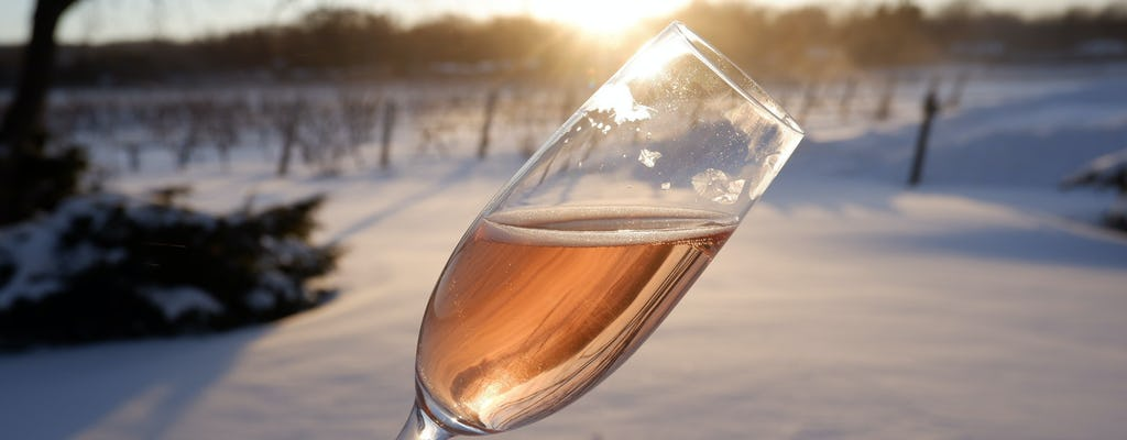 Icewines of Niagara tour from Toronto