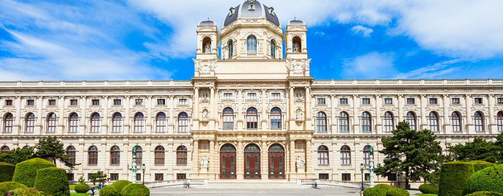 Art History Museum Vienna private guided tour