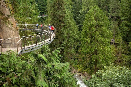 Grouse Mountain and Capilano Suspension Bridge Park tour
