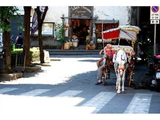 Pompeya y Costa Amalfitana: entradas sin colas a Pompeya y servicio de recogida privado