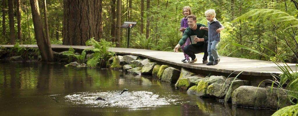 Vancouver City und Capilano Suspension Bridge Tour