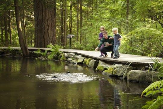 Tour por la ciudad de Vancouver y el puente colgante de Capilano