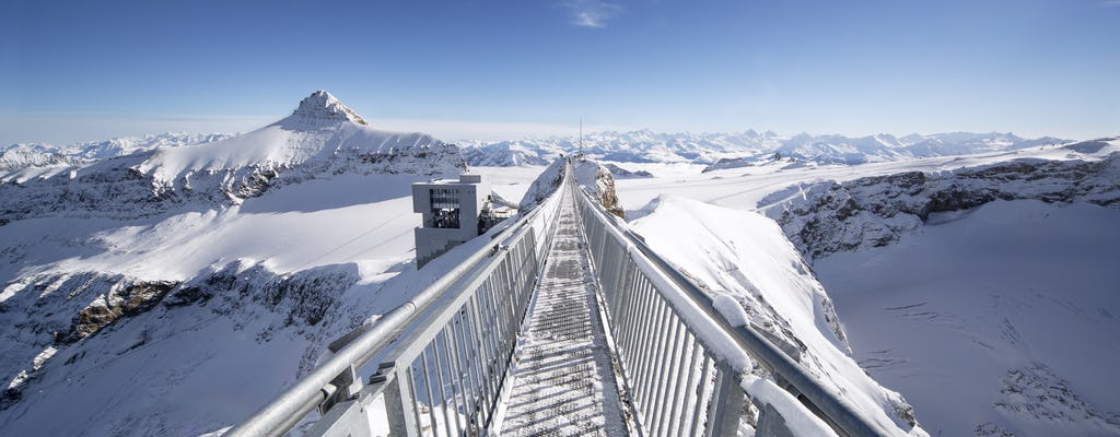 Full-day tour to Glacier 3000 and Montreux from Geneva