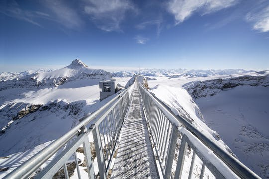 Excursión de día completo al Glaciar 3000 y Montreux desde Ginebra