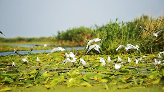 2-day tour to the Danube Delta and Black Sea
