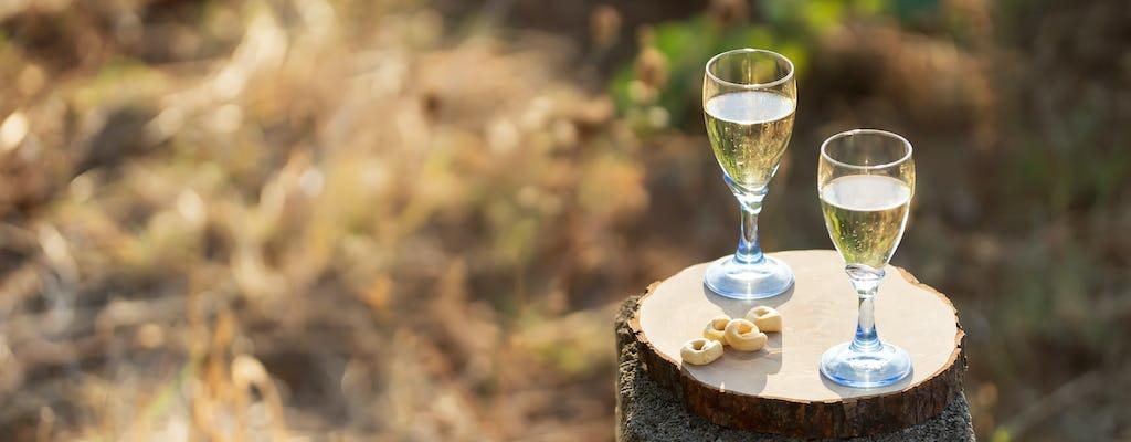 Salento wine tour from Lecce