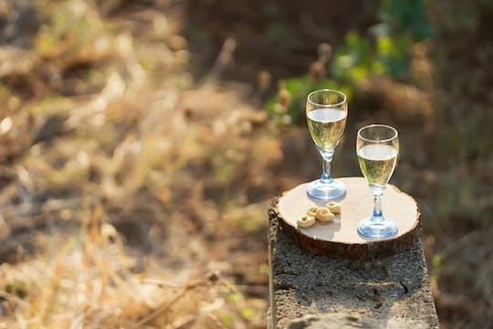 Саленто винный тур из Лечче