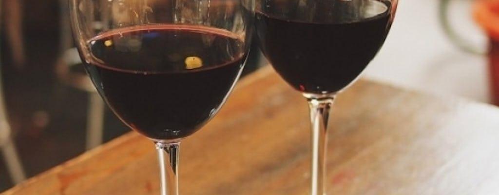 CHIANTI - GODITI UN'ESPERIENZA VINICOLA (tour del vino Chianti classico - con minivan navetta - mezza giornata)