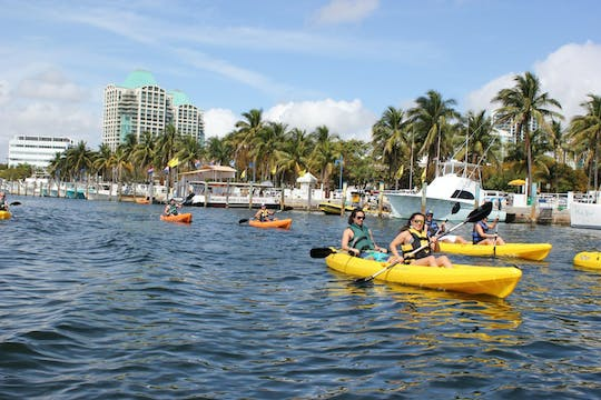 1 hour single or tandem kayak rental