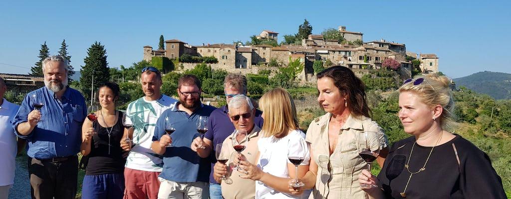 Montefioralle wineries visit